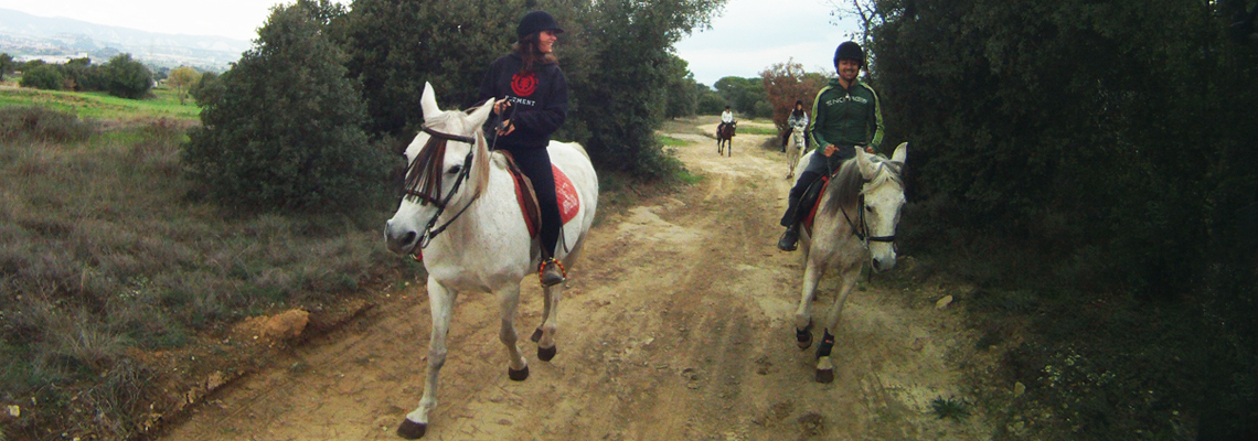 classes_adults_seva_hipica_classe_cavall